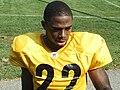 William Gay Steelers.jpg