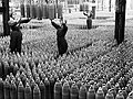 Women workers with shells in Chilwell filling factory 1917 IWM Q 30040.jpg