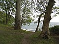 Woodland and beach between Burntisland and Aberdour - geograph.org.uk - 1277624.jpg