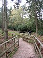 Woodland walk at the New Forest Otter, Owl and Wildlife Park - geograph.org.uk - 35642.jpg