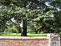 Wroxall Abbey grounds.JPG