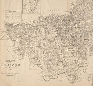 Lands administrative divisions of Australia - 1897 cadastral map of the County of Wynyard, New South Wales, showing parishes and property boundaries.