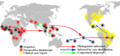 Zika phylogenetic analysis map.png