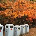Zoshicho, Nara, Nara Prefecture 630-8211, Japan - panoramio (37).jpg