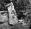 """""""Čok"""" (z """"žbelami"""") in vül za žbele (čebele), Labor 1950.jpg"""