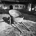 """""""Šatrga"""" (ročni voz) za voziti s polja, Male Češnjice 1950.jpg"""