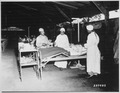 """Surgical ward treatment at the 268th Station Hospital, Base A, Milne Bay, New Guinea. Left to right, Sgt. Lawrence McKr - NARA - 530771.tif"