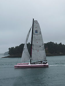 Île de Berder-Trimaran rose (2).jpg