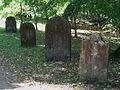Židovský hřbitov - břeh přehrady Seč, Hoješín.jpg