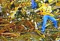 Группа цветы клип Старый Новый Год.jpg