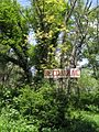 Дендрологічний парк 16.jpg
