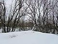 Деревня Верхние Валдушки. Вид с дороги.Фото А. Щекинова 01.jpg