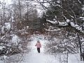 Долгожданный снег - panoramio.jpg