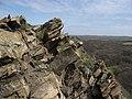 Королівські скелі, крупний план.jpg