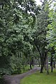 Личаківський парк (Львів) 03.JPG