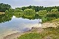 Мальовниче озеро влітку в парку Партизанської Слави.jpg