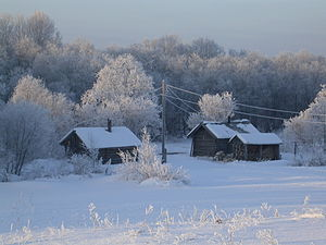 Kargopolsky District - The village of Niz in winter