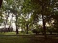 Паркова алея Міського Саду.jpg