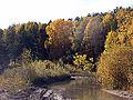 Река Ельцовка 05.jpg