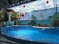 Сочинский дельфинарий парка «Ривьера». 24.jpg