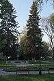 Ужгород (551).jpg
