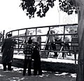 גן החיות של תל אביב פילים צלם וילי פולנדר 1954 ארכיון עיריית תל אביב.jpg