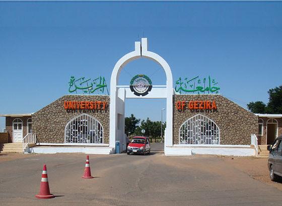 جامعة الجزيرة Wikiwand