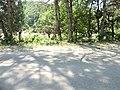 შ38, Georgia - panoramio (10).jpg