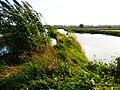原上坝圩圩埂 - panoramio.jpg