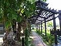 山腳國小 Shanjiao Elementary School - panoramio (4).jpg