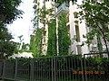 建筑物垂直绿化 - panoramio.jpg