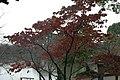 日本京都寺院201.jpg