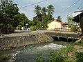 01873jfPinagbarilan Cantulinan Irrigation Baliuag Bulacan Dikes Roadfvf 30.JPG