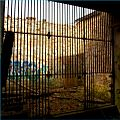 02 Glasgow Zoo (4405867677).jpg