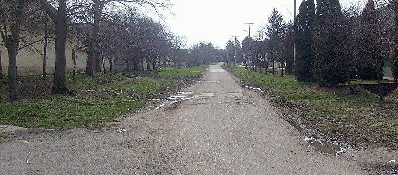 File:03.03.2010. Bácsfeketehegy Feketić Feketitsch - panoramio - Sandor Bordas (7).jpg
