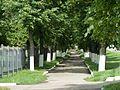 0300 Парки и скверы Орла.jpg