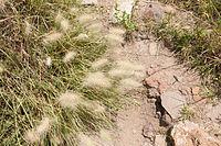 15-07-20-Teotihuacan-by-RalfR-N3S 9417.jpg