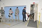 181st Intelligence Wing host K9 training 140319-Z-PM441-194.jpg