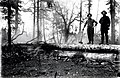 1923. Bernie Zollman and C.R. King burning peeled log to control western pine beetle in Area 1. Southern Oregon Northern California cooperative beetle control project. (36356865035).jpg