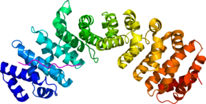 Phospholipid scramblase - Image: 1Y2A