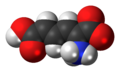 2-Aminomuconic-acid-zwitterion-3D-spacefill.png