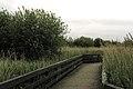 2006-06-01 - United Kingdom - England- London - london wetland centre 4888313441.jpg