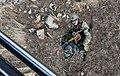 2011년 4월 공군 한미연합 생환 및 산악 구조훈련(1) (7499909034).jpg