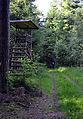 201206161816a Limeswanderweg zwischen Wp 10-8 und 10-9.jpg