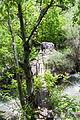 2014 Górski Karabach, Widoki ze szlaku turystycznego Dżanapar (11).jpg
