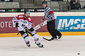 20150207 1826 Ice Hockey AUT SVK 9839.jpg