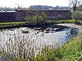 20150419 Maastricht; Nieuwe Bossche Fronten 02.jpg