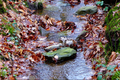 2018-12-22-December-watercolors.-Hike-to-the-Ratingen-forest. File-17.png