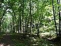 20180522180DR Dohna Naturschutzgebiet Spargrund.jpg