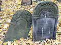 251012 Detail of tombstones at Jewish Cemetery in Warsaw - 58.jpg